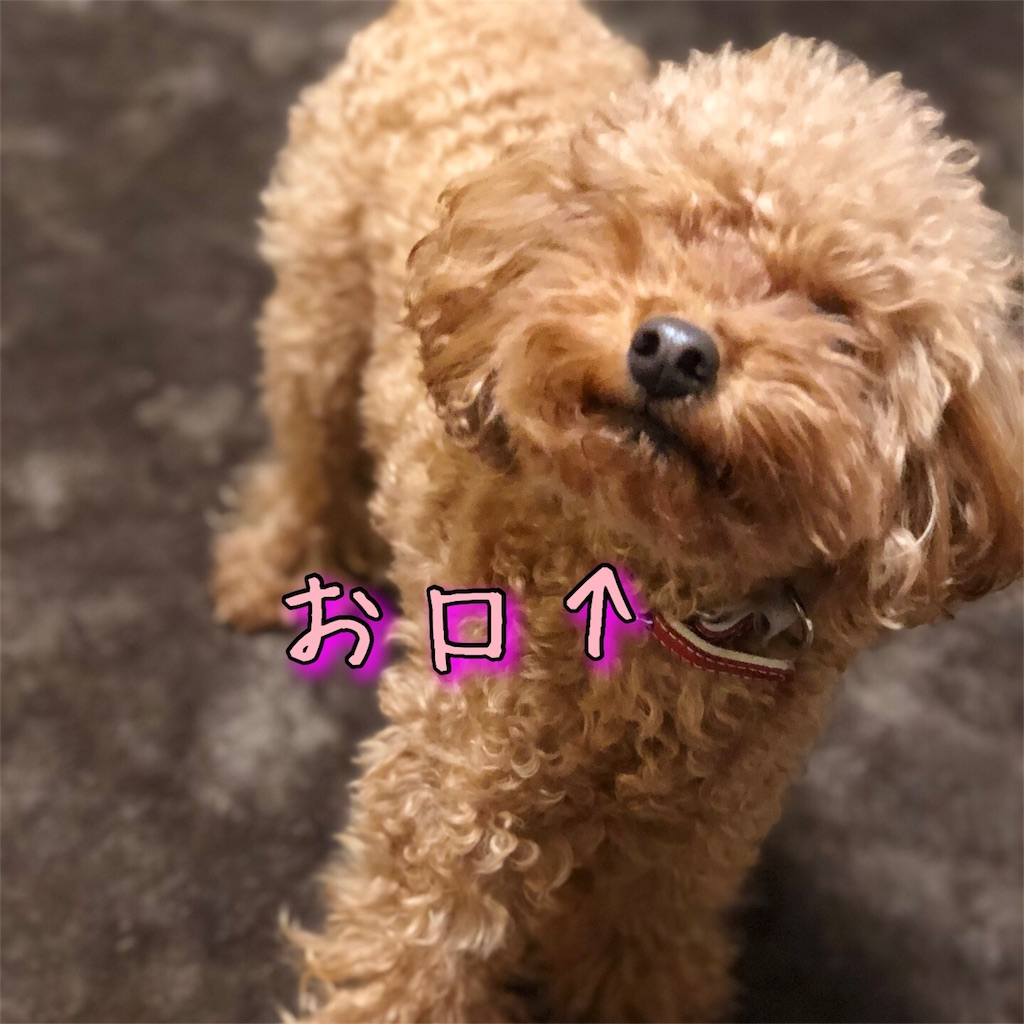 f:id:nana_p:20180124184607j:image