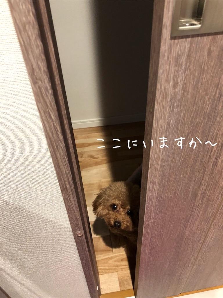 f:id:nana_p:20180131080302j:image