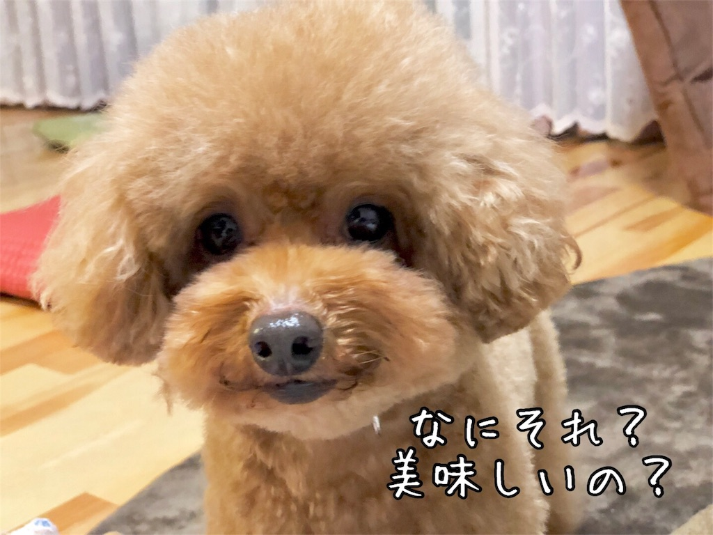 f:id:nana_p:20180203165431j:image