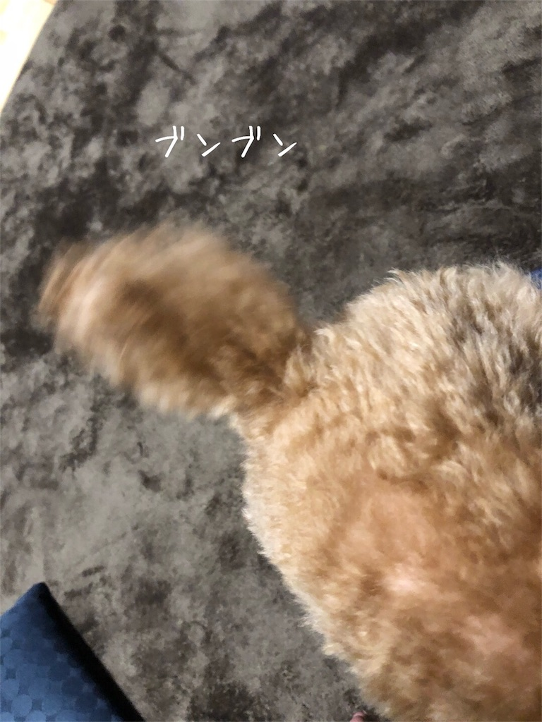 f:id:nana_p:20180207080324j:image