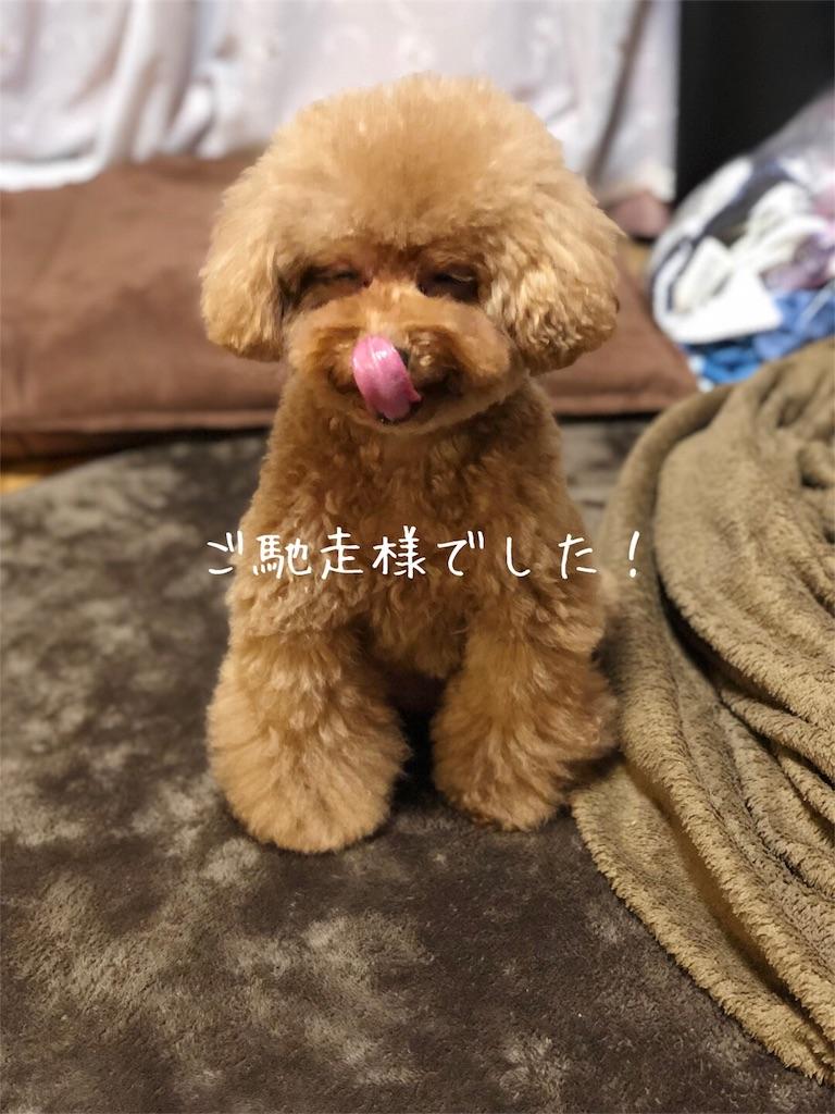 f:id:nana_p:20180208080715j:image