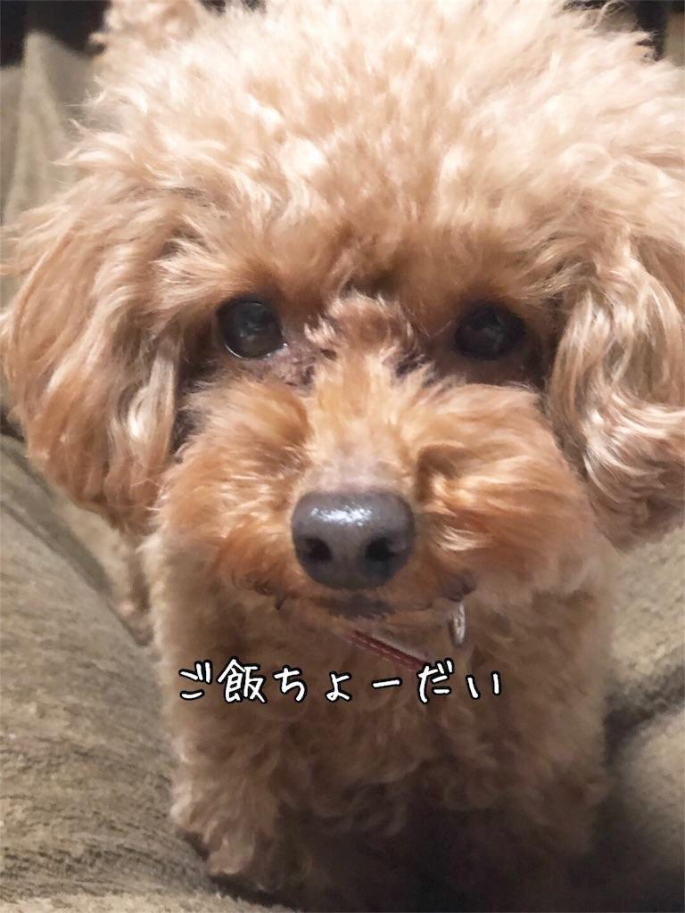 f:id:nana_p:20180212194102j:image
