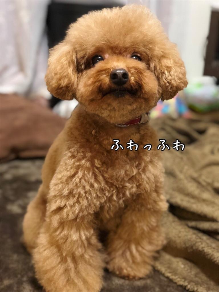 f:id:nana_p:20180214200921j:image