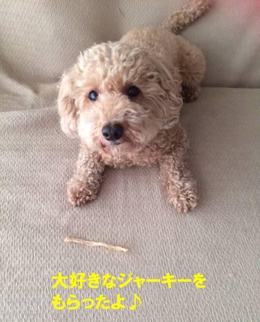 f:id:nanachan59:20170723223409j:plain