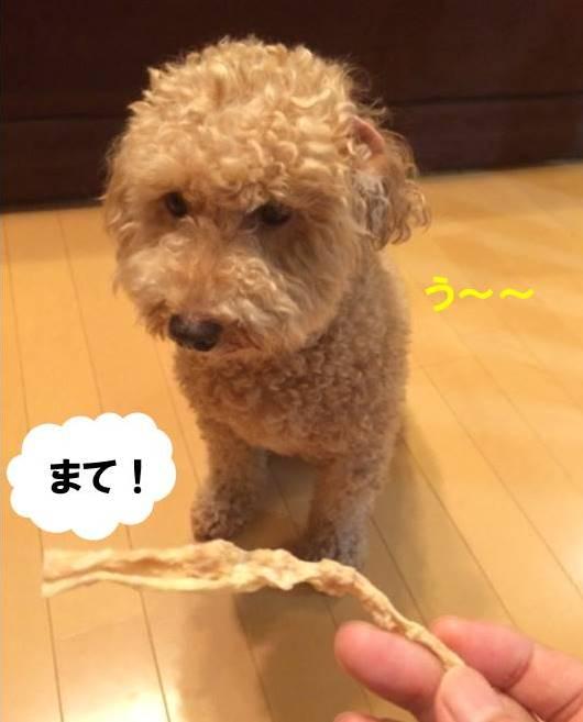 f:id:nanachan59:20170803205948j:plain