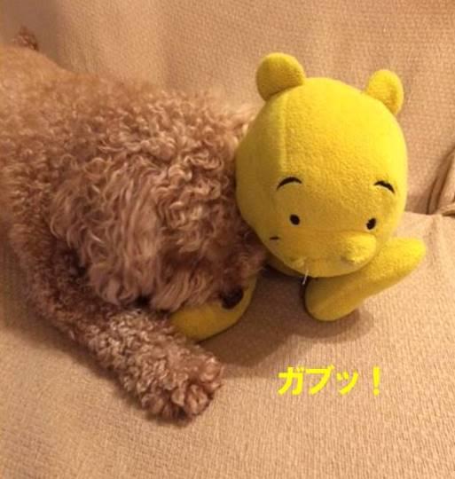 f:id:nanachan59:20170810220959j:plain