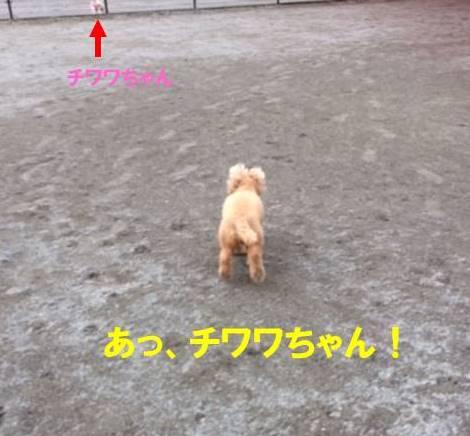 f:id:nanachan59:20170820001603j:plain