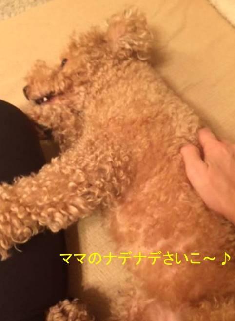 f:id:nanachan59:20170922013850j:plain