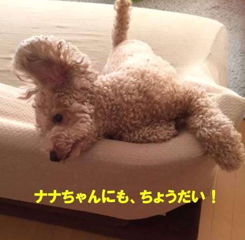 f:id:nanachan59:20170926150209j:plain