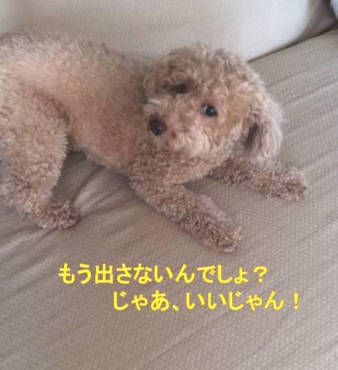 f:id:nanachan59:20171002141216j:plain