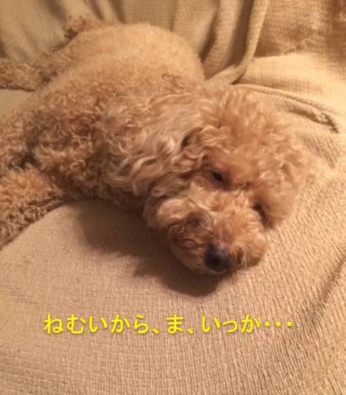 f:id:nanachan59:20171008215131j:plain