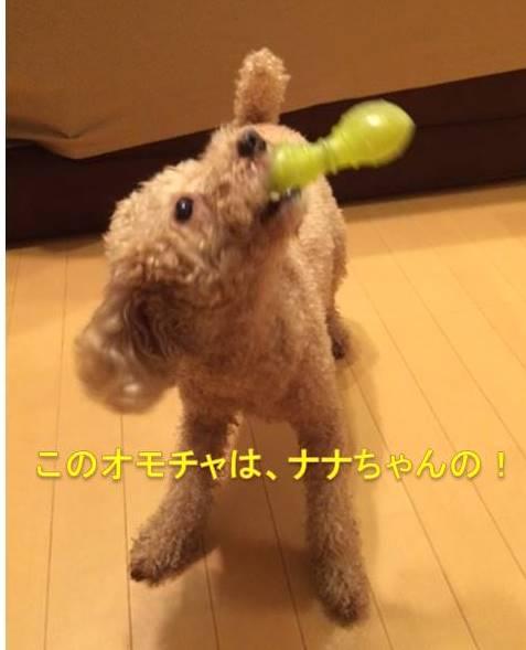 f:id:nanachan59:20171009223916j:plain