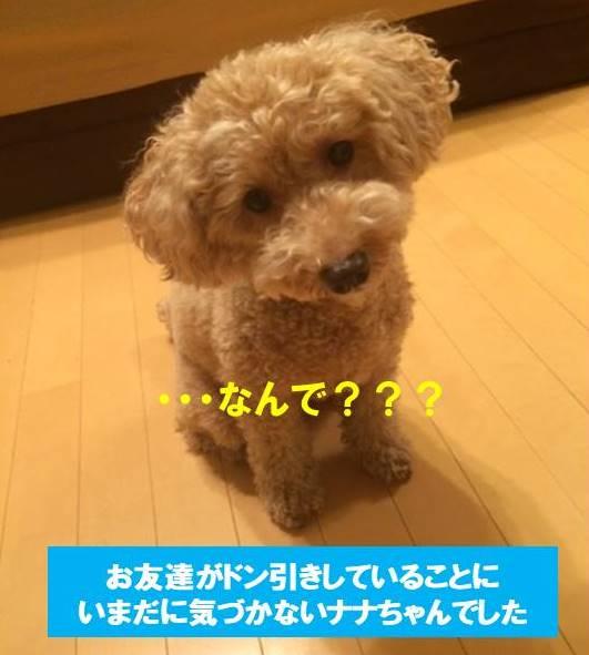 f:id:nanachan59:20171020205059j:plain