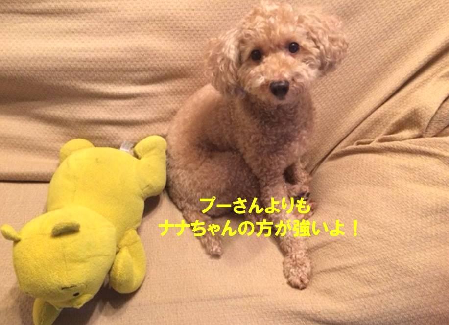 f:id:nanachan59:20171024203115j:plain