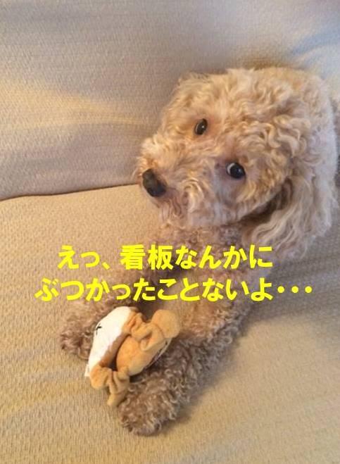 f:id:nanachan59:20171026150443j:plain