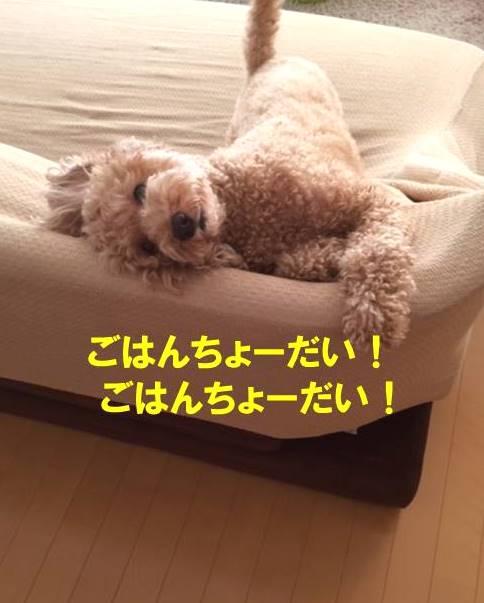 f:id:nanachan59:20171026150848j:plain