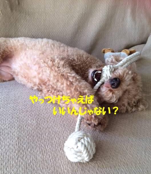f:id:nanachan59:20171028143932j:plain