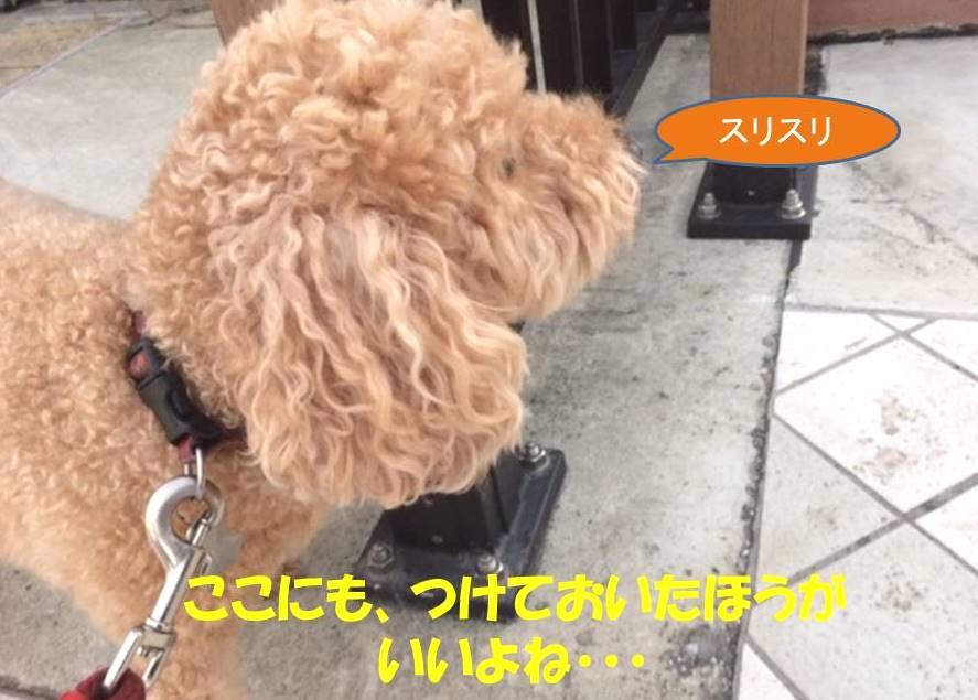 f:id:nanachan59:20171031100325j:plain