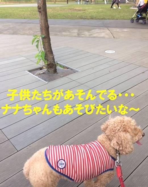 f:id:nanachan59:20171103175852j:plain