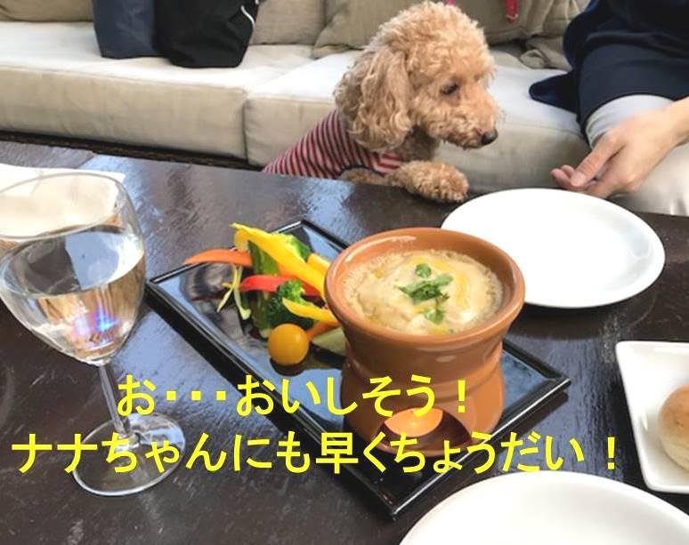 f:id:nanachan59:20171106152536j:plain