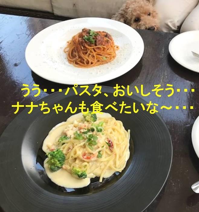 f:id:nanachan59:20171106153447j:plain