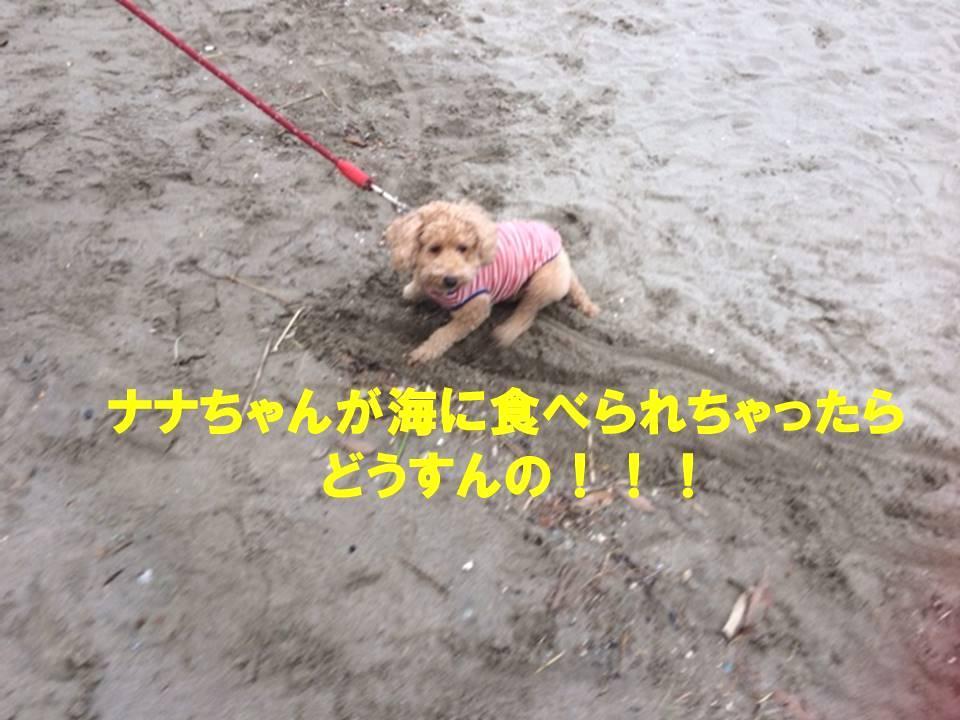 f:id:nanachan59:20171107213710j:plain