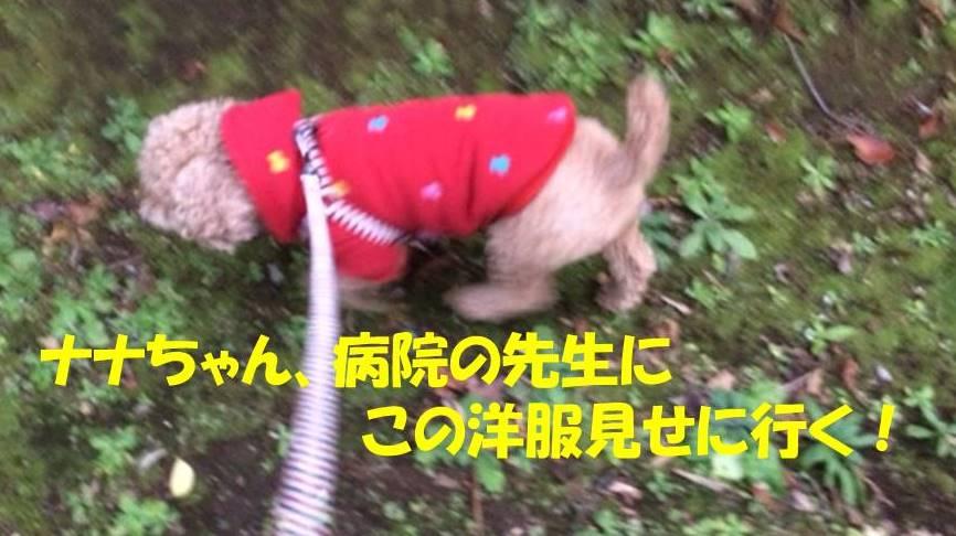 f:id:nanachan59:20171117152246j:plain