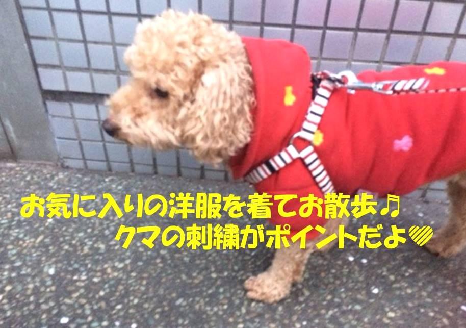f:id:nanachan59:20171117152643j:plain