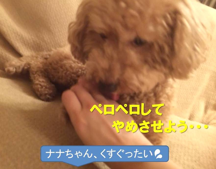 f:id:nanachan59:20171120191027j:plain