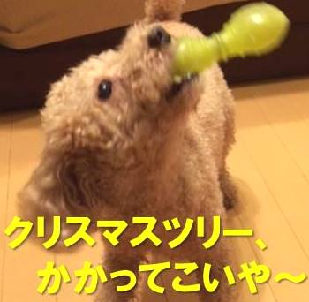 f:id:nanachan59:20171211233222j:plain