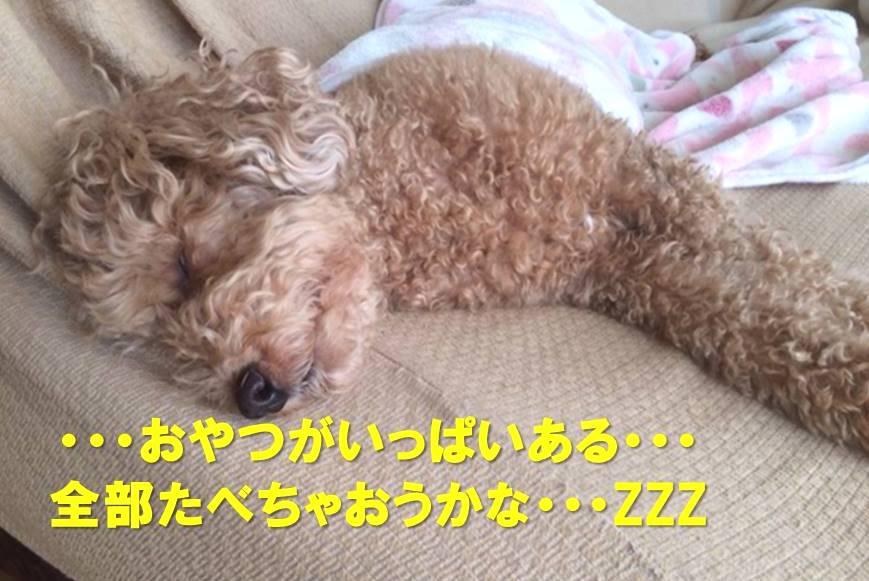 f:id:nanachan59:20171213180036j:plain