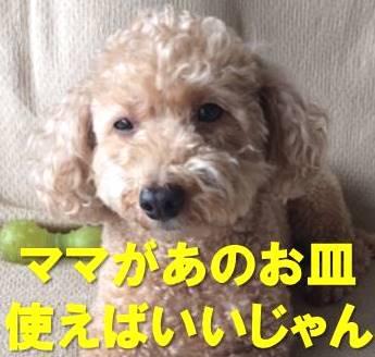 f:id:nanachan59:20180107150510j:plain