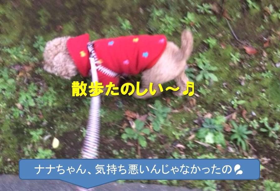 f:id:nanachan59:20180109144549j:plain