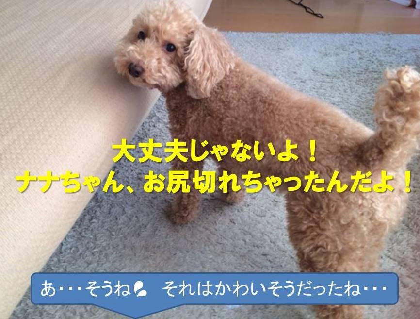 f:id:nanachan59:20180109145434j:plain