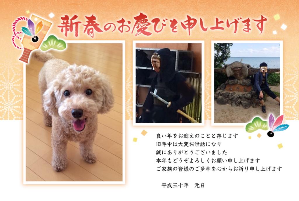 f:id:nanachan59:20180114191916j:plain