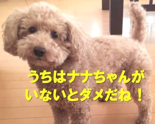 f:id:nanachan59:20180114205407j:plain