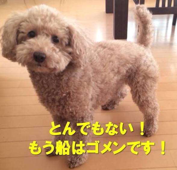 f:id:nanachan59:20180121162052j:plain