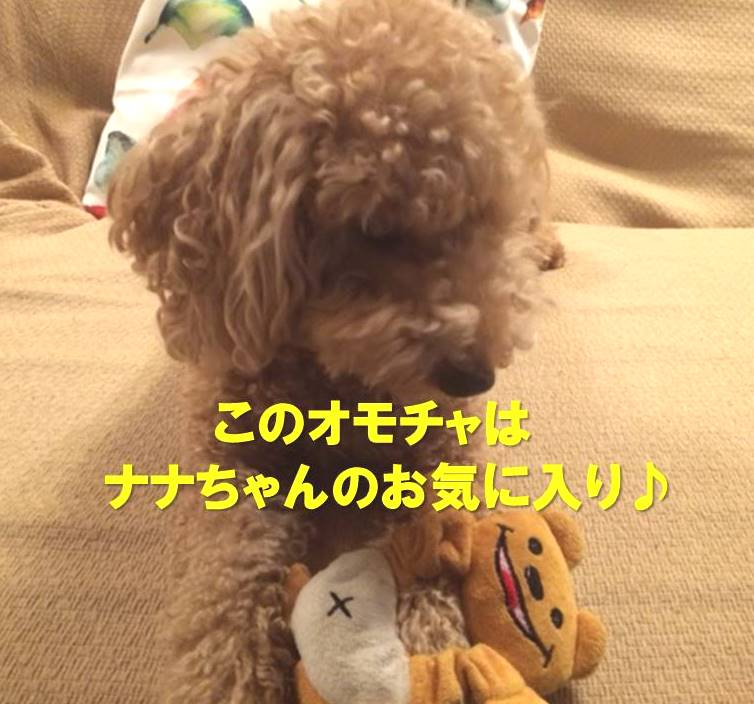 f:id:nanachan59:20180122223759j:plain