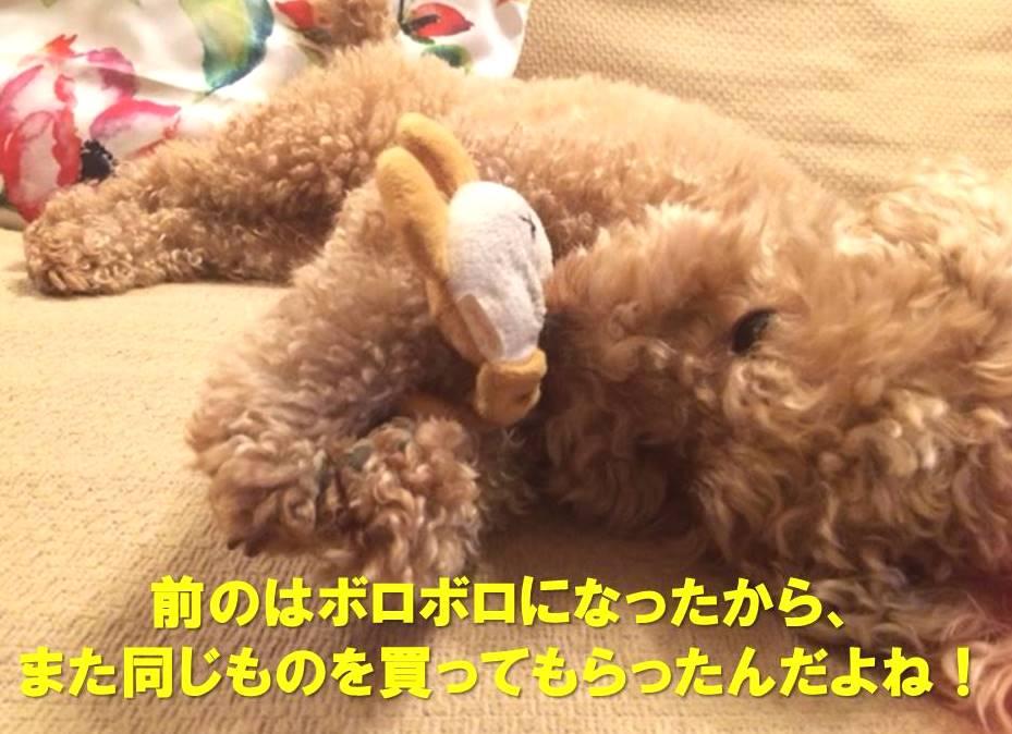f:id:nanachan59:20180122224146j:plain