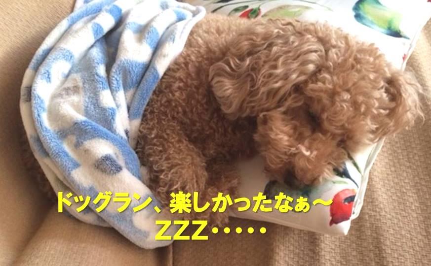 f:id:nanachan59:20180124165710j:plain