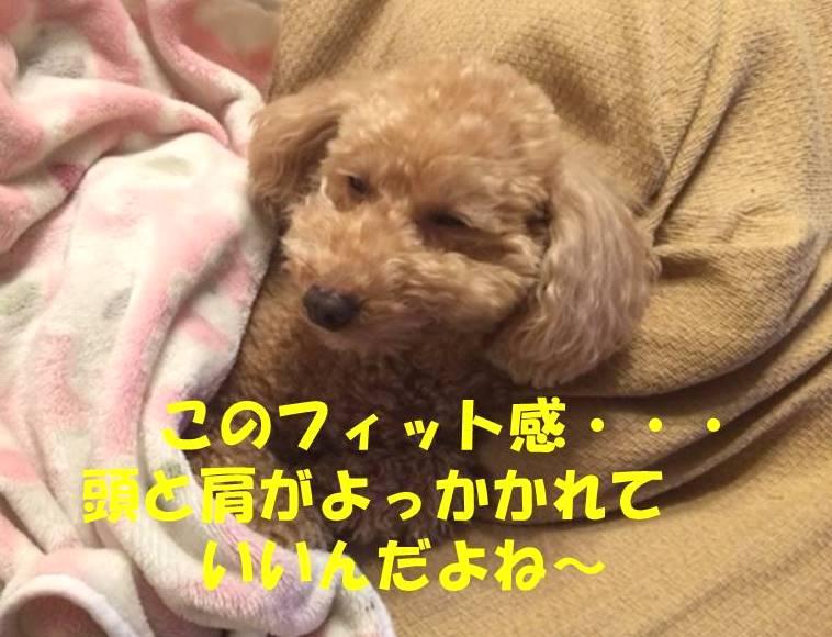 f:id:nanachan59:20180221182738j:plain