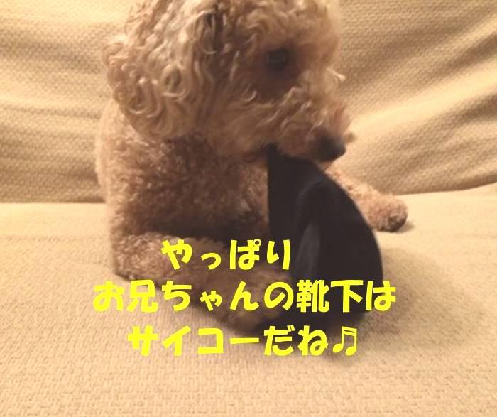 f:id:nanachan59:20180402180721j:plain