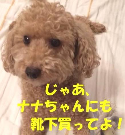 f:id:nanachan59:20180402181839j:plain