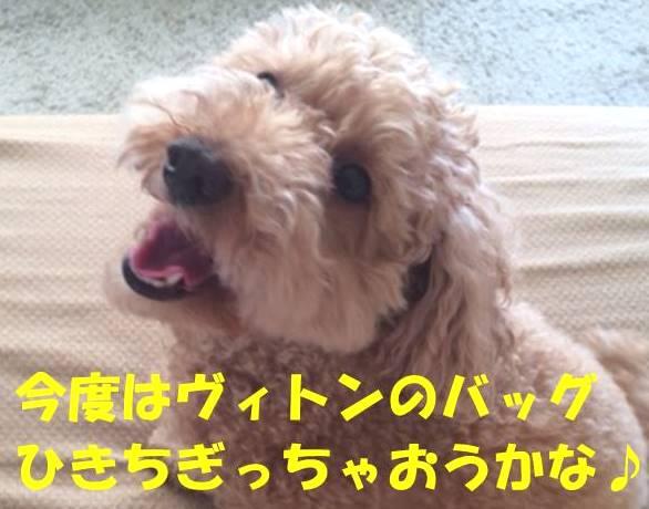 f:id:nanachan59:20180407175632j:plain