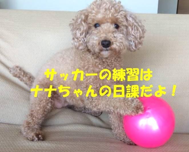 f:id:nanachan59:20180409175338j:plain