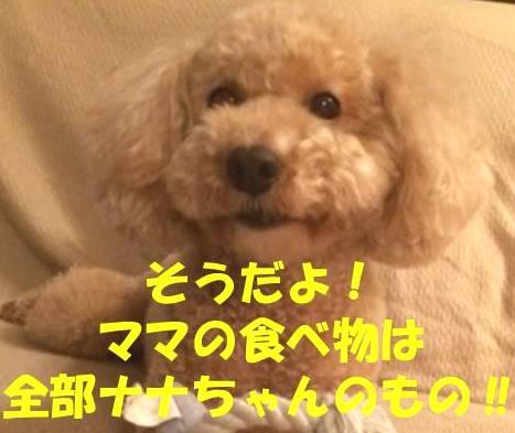 f:id:nanachan59:20180429181610j:plain