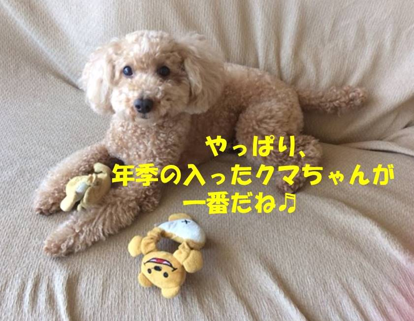 f:id:nanachan59:20180502183149j:plain