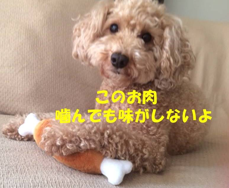 f:id:nanachan59:20180516232022j:plain