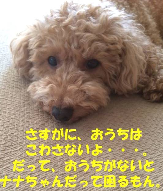 f:id:nanachan59:20180521180025j:plain
