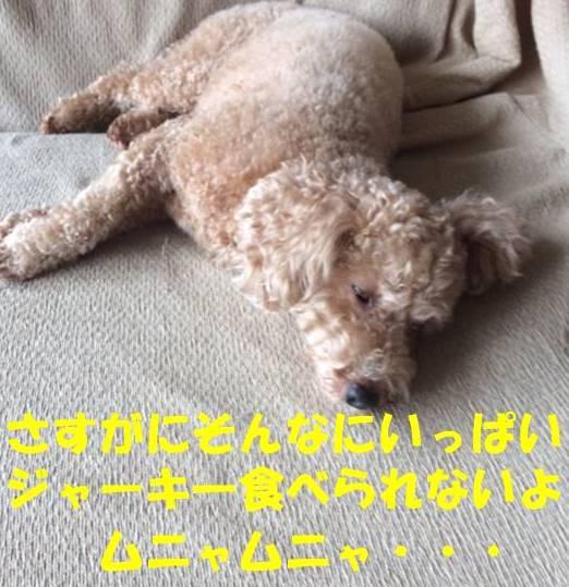 f:id:nanachan59:20180529182159j:plain